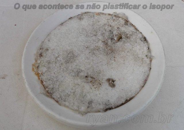 projeto_bebedouro_DSC01594_ryan.com.br